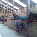 Vue intérieure barn